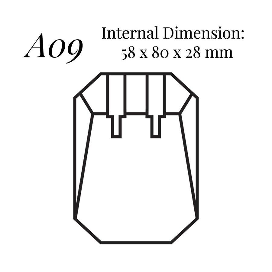 A09 Earring Case
