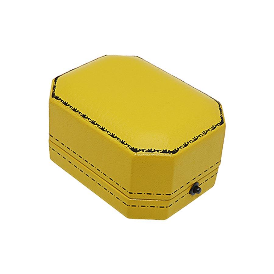 A20 Pendant Case