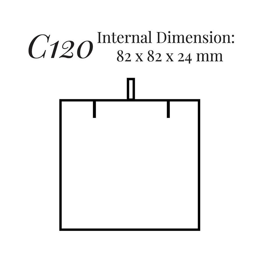 Pendant Case C120