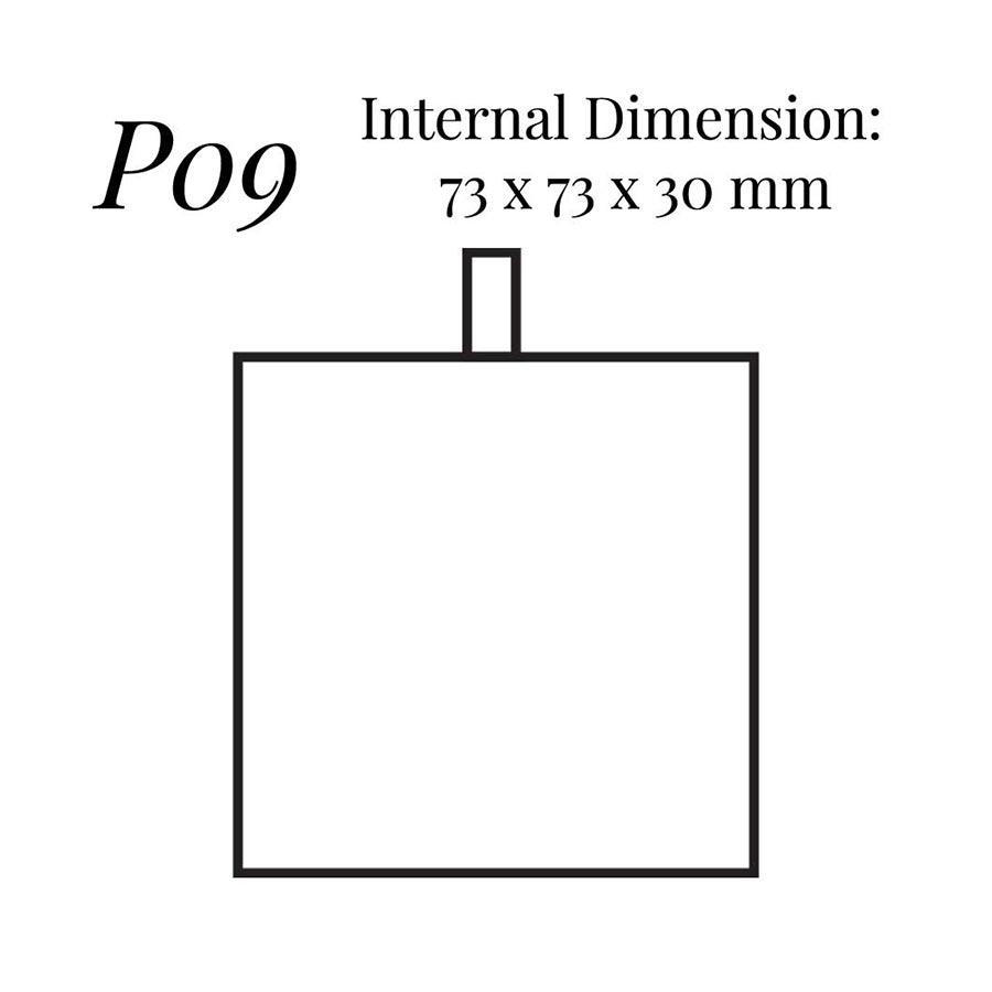 P09 Universal Case