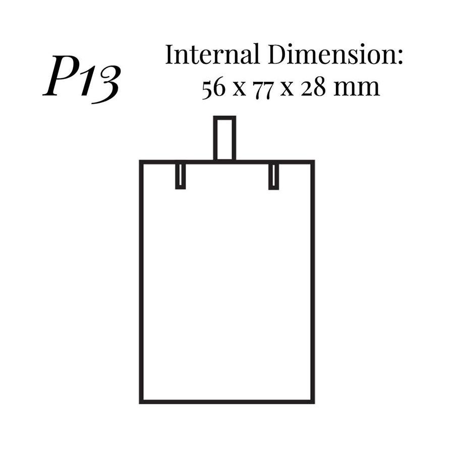 P13 Pendant Case