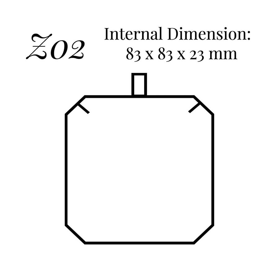 Z02 Universal Pendant Case