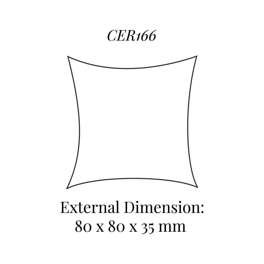 CER166 Small Cushion